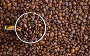 开咖啡馆倾家荡产?全案解析星巴克、瑞幸、自助咖啡、咖啡陪你…揭秘咖啡投资惨状
